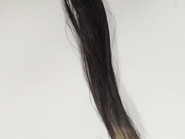 髪萌カラーアップ1回目